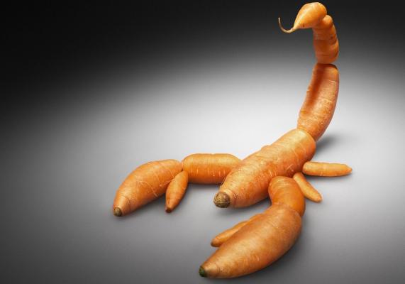 Alimentos-transgénicos