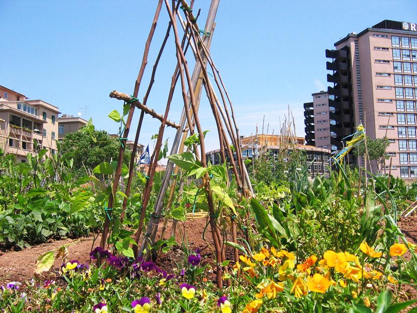 Orti-e-giardini-condivisi-Orti-Urbani-Garbatella-Foto-Zappata-Romana-02