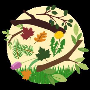compost_yard-fall