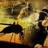 Virus-zika-y-mosquitos-OGM-cosas-que-te-ocultan-y-que-debes-conocer