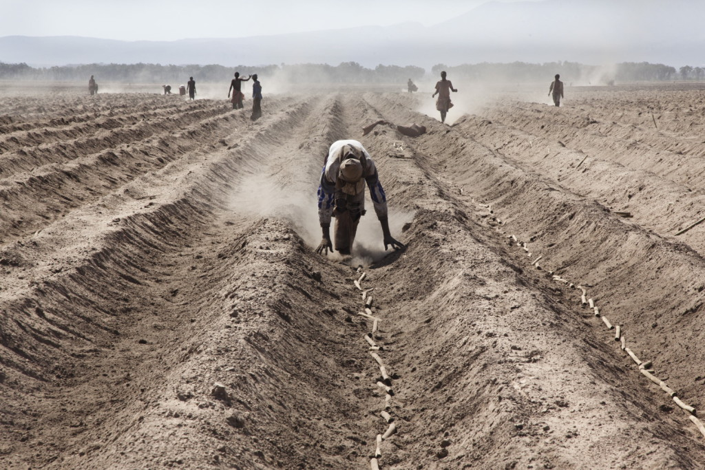 landgrabbing-bini