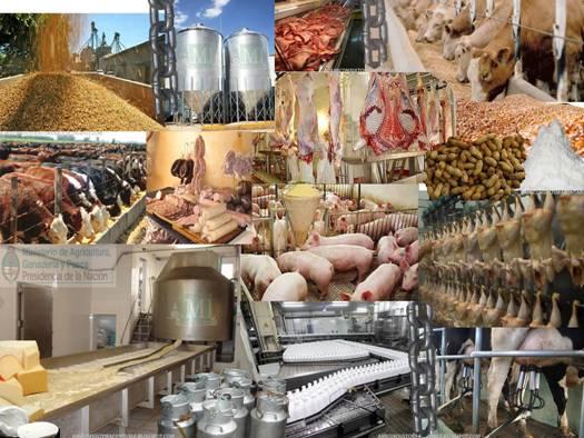 comida_industrial_las_cinco_enfermedades_mas_comunes_en_mexico_ligadas_a_los_alimentos