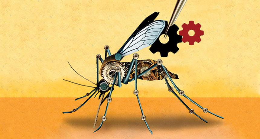 Risultati immagini per gene drives