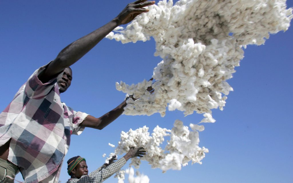 "Pama, BURKINA FASO: Two Burkinabese farmers throw coton bolls, 22 January 2007 in Pama, central Burkina Faso. The world's coton crisis is seriously threatening the survival of farmers in Burkina Faso, the leading cotton producer in Sub-Saharian Africa, as its three main companies are not solvent according to banks. ""Coton companies are insolvent, none of them have paid the farmers after selling their 2006 production"", Francois Traore, president of the Burkinabese coton producers told AFP. AFP PHOTO / ISSOUF SANOGO (Photo credit should read ISSOUF SANOGO/AFP/Getty Images)"